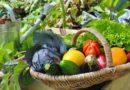 Még lehet pályázni a konyhakerti és kisállattartási szociális földprogramra